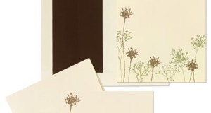 Baby's Breath Floral Invitation and Note Card Kit – Quantity of 50